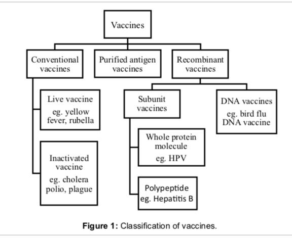 types of vaccines
